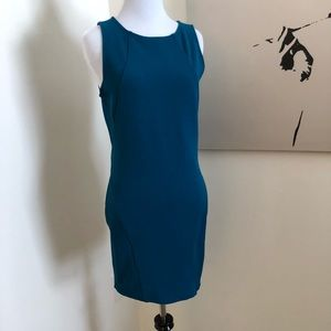 BodyCon form fitting dress